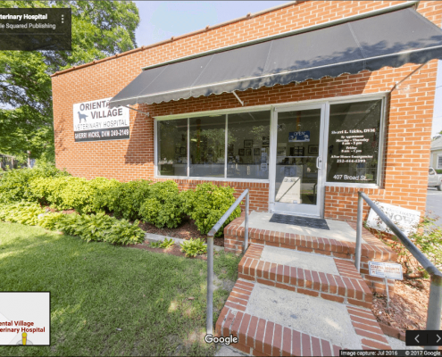 Google Business View showing the exterior of veterinarian office in Oriental, NC.